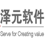 长沙泽元软件有限公司