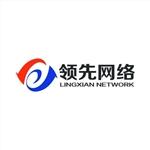 湖南领先网络科技有限公司