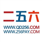 山东二五六网络电子商务有限公司辽宁分公司