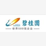深圳市碧桂园房地产投资有限公司