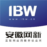 安徽网新科技有限公司