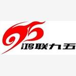 北京鸿联九五信息产业有限公司