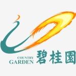 广东碧桂园物业服务股份有限公司